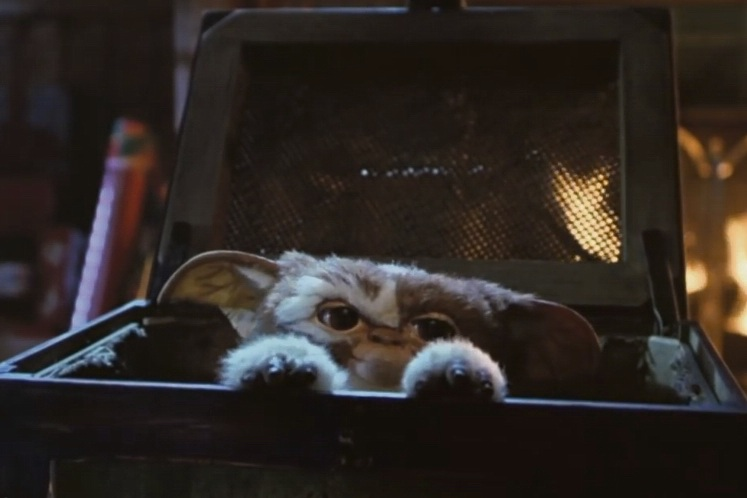 Gremlins: it made us all want a Mogwai for Christmas. Picture: Warner Bros.
