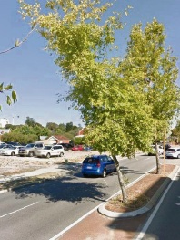South Perth: tree removals on Labouchere Rd questioned