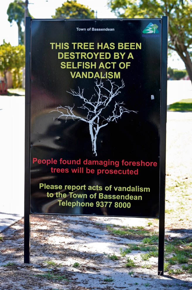 A sign was installed some time ago when this street tree was poisoned. The tree has recovered and the sign is still in place. Picture: David Baylis