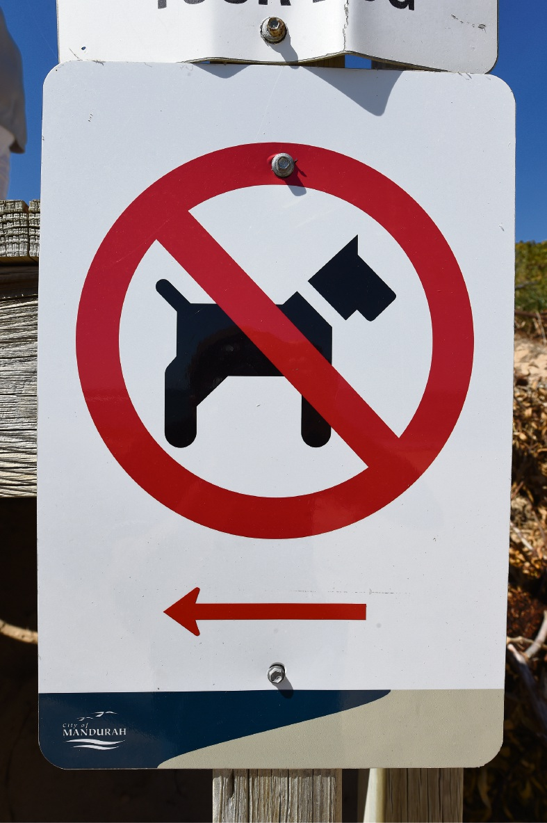 Natalia wants dog control signs respected at Avalon beach. Picture: Jon Hewson