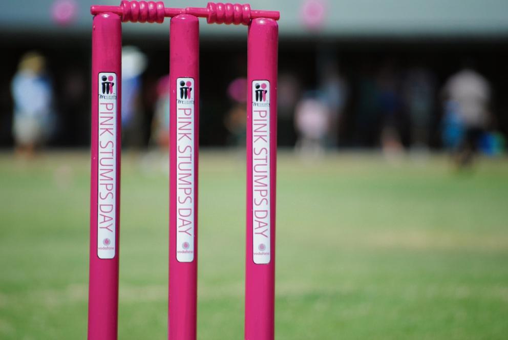 Cricket: Hillman club, Baldivis school up for Pink Stumps