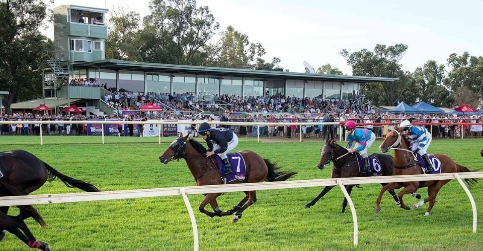 Giddy-up: Pinjarra Cup on this Sunday