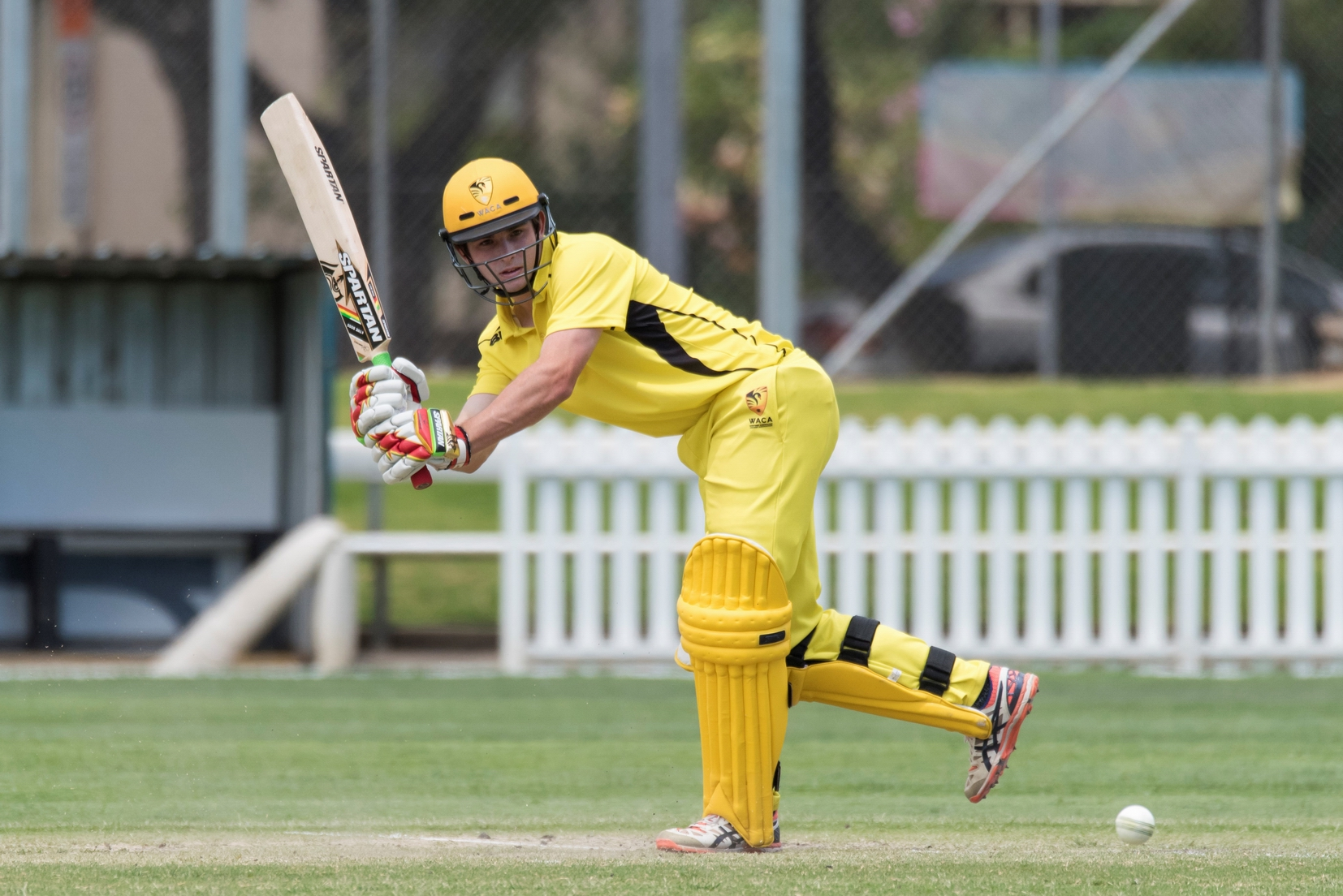 Batsman Matthew Spoors in action.