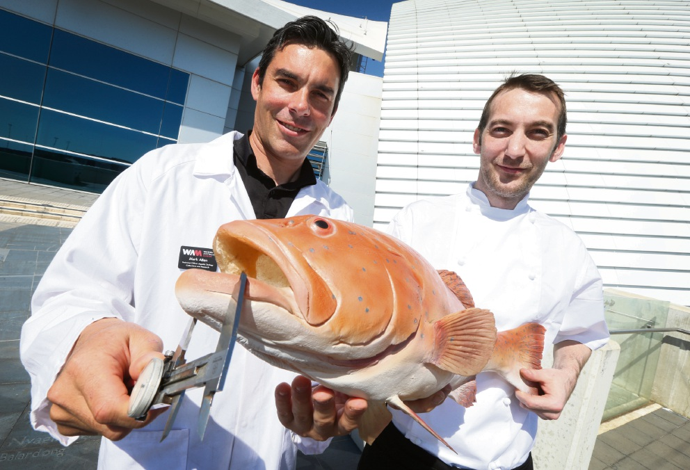 Learning and eating fish: Dr Mark Allen and chef Phil Lomax.  Picture: Matt Jelonek        www.communitypix.com.au   d467573