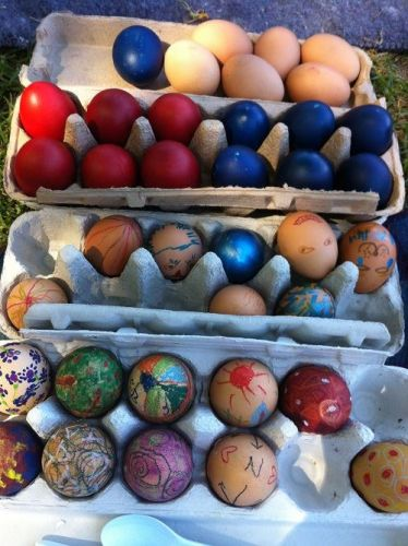 Easter egg rolling event in Mount Lawley