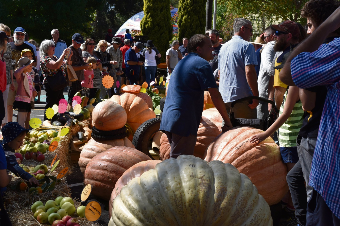 Dwellingup Pumpkin Festival drew a record crowd over the weekend. Picture: Facebook