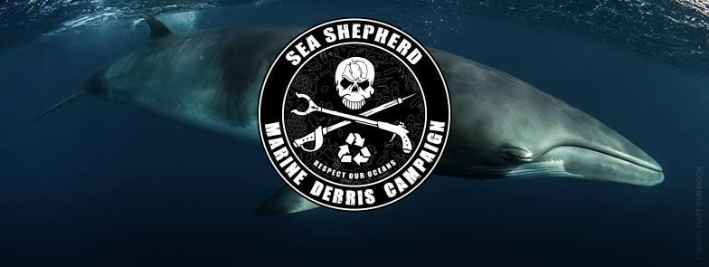 Point Peron: Beach Clean Sea Shepherd Marine Debris Campaign