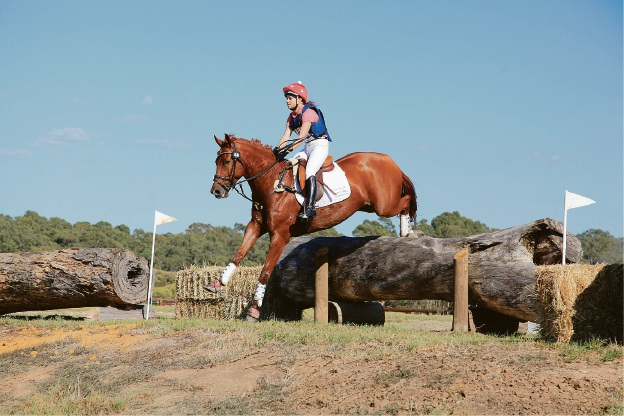Work on Murray Regional Equestrian Centre Stage Two underway