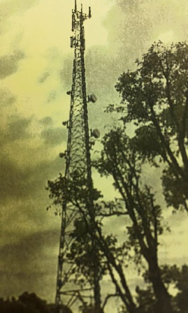 Mandurah council approves phone tower despite bad reception