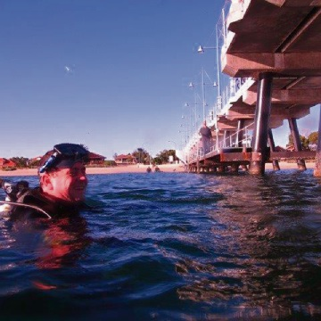 Team of divers clean sea floor at Palm Beach Jetty