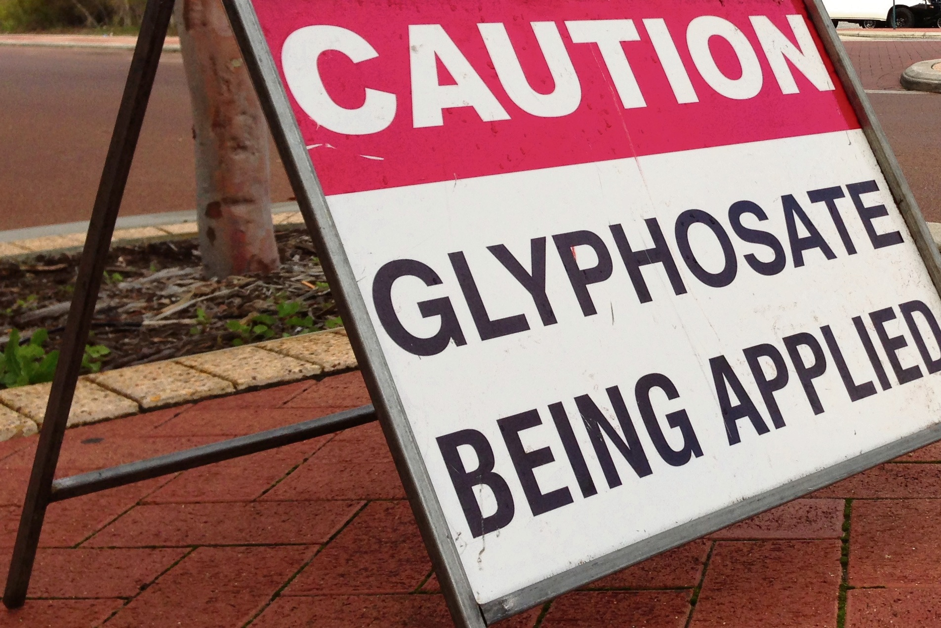 Town of Bassendean to seek State Govt and Main Roads support to ban glyphosate use on hard surfaces