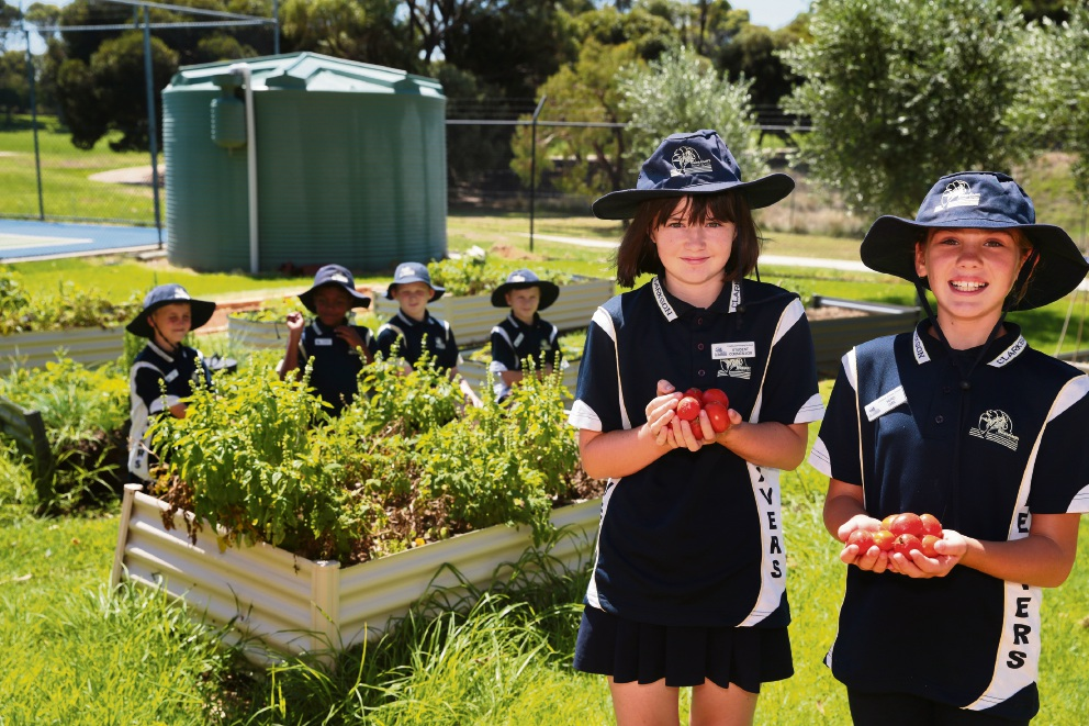Clarkson PS wins Ocean Keys Shopping Centre rewards program, plans to reopen canteen