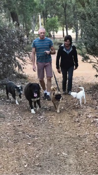 Simon and Hazel Wheatley-Hey take Two Sox and Floyd (middle) for their first walk after their release from the pound.       Picture: Facebook