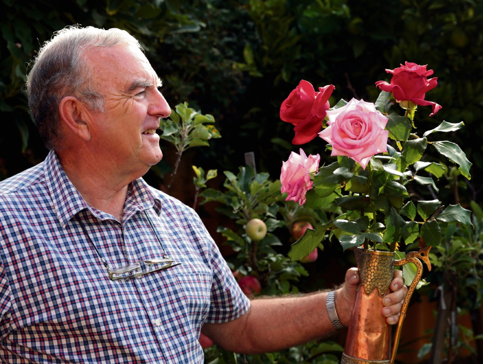 Rose Society of WA treasurer Stewart Coles, of Woodvale, has high hopes for full blooms for the Autumn Rose Show.  Picture: Martin Kennealey   d468458