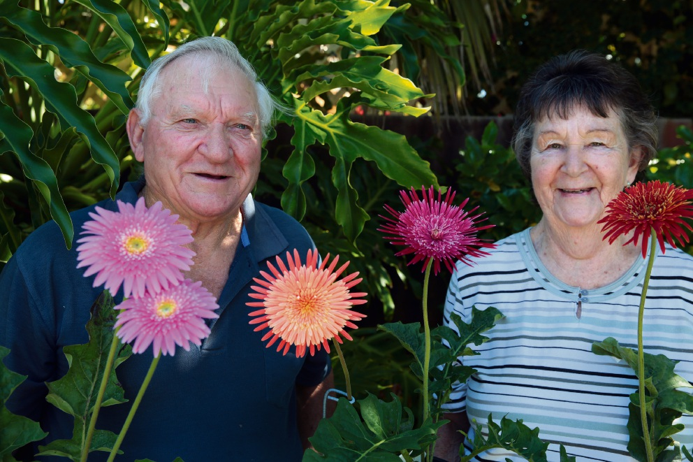 Gerbera growers Ed and Mary Renton, of Hillarys.  Picture: Martin Kennealey  d467441