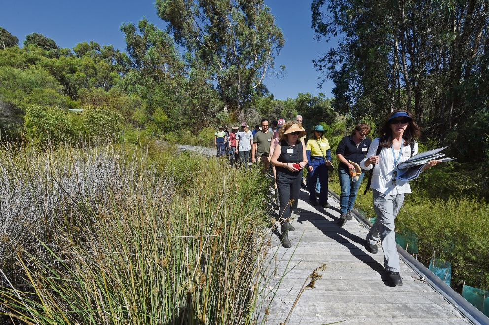 Denise Crosbie leads a walking group at Bibra Lake.Picture: Jon Hewson         d449385