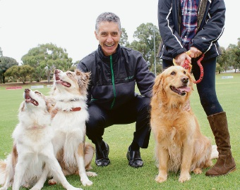 Armadale MLA Tony Buti and his dog Sophia making new friends at John Dunn Sporting Reserve in Kelmscott.