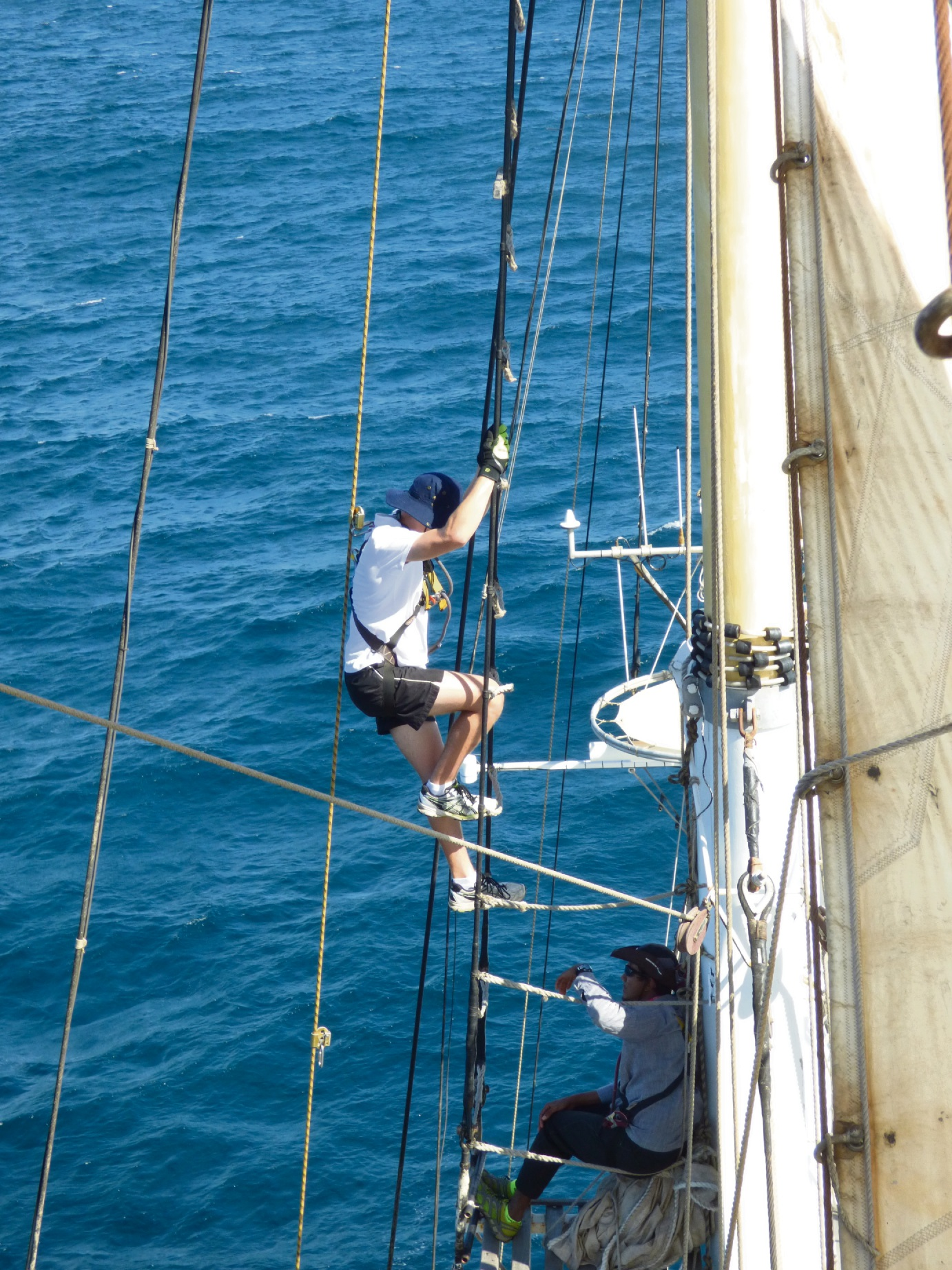 Rockingham SHS student gets adventure on the high seas aboard Leeuwin II