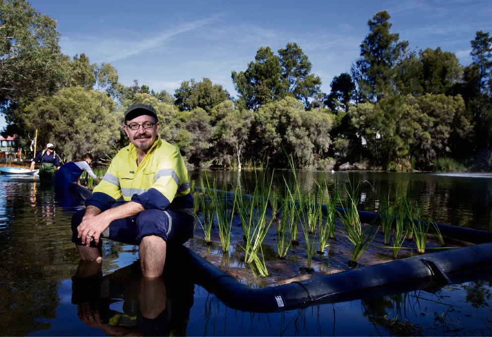 Working on a pilot program at Brickworks Lake in Maylands is environmental consultant Michael Mac Shane. Picture: Marie Nirme d469843