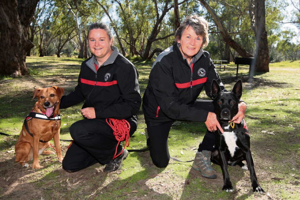 Sonya Bowditch and Lesley Watson with their dogs Bella and Tanuki. Picture: Bruce Hunt d469788