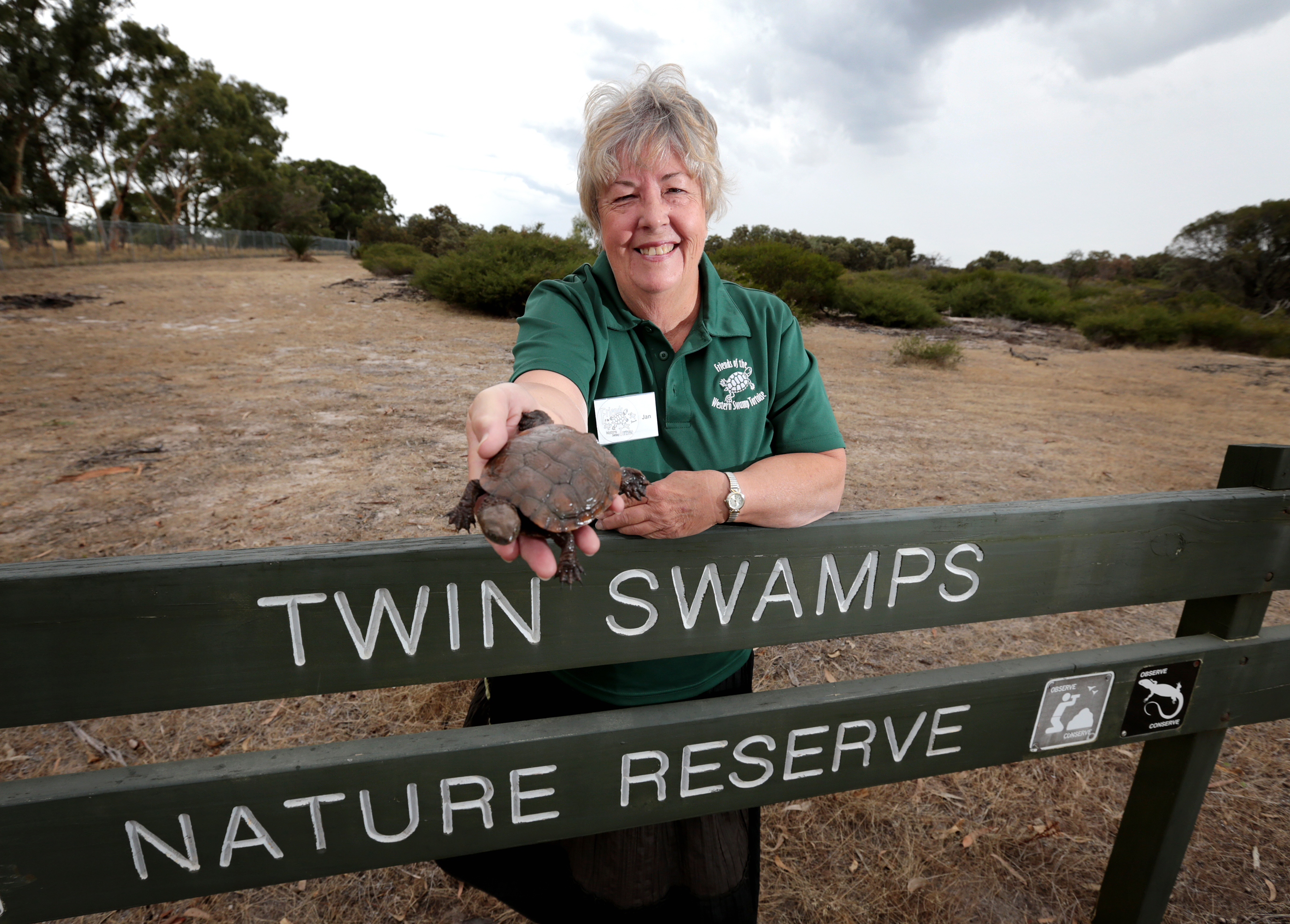 Chair of the Friends of the western swamp tortoise Jan Bant.  Picture: David Baylis d466835