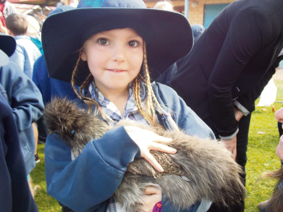 Mindarie PS students get hands on with farm animals