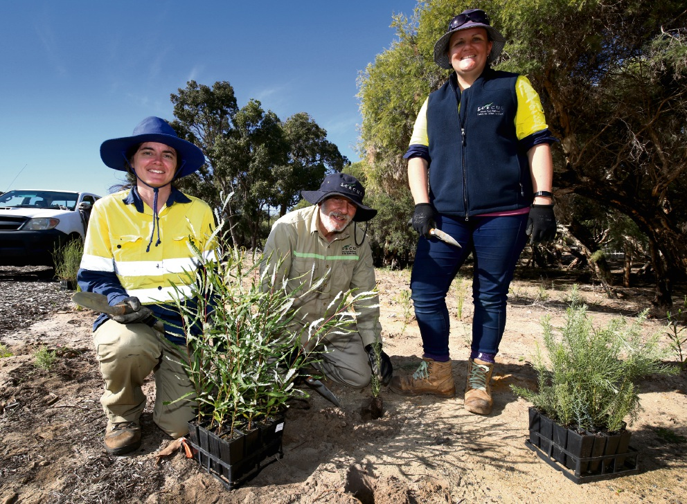 Megan Crotty, Tony Parrelli and Erin Farley taking part in the Yule Brook Revegetation.�������d469799