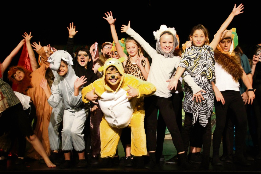The Halls Head Primary School cast of The Jungle Book.