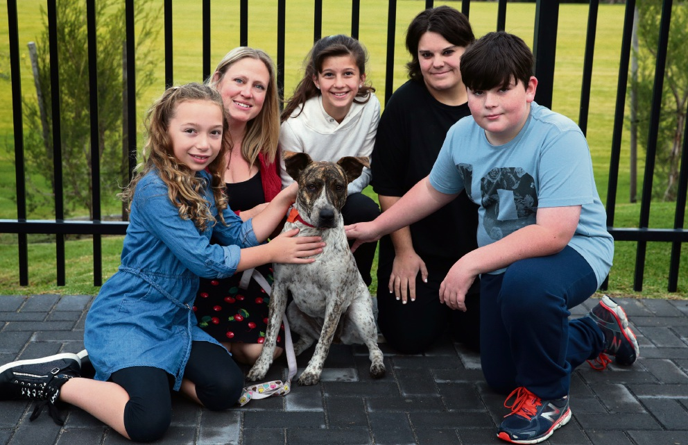 Ella Jarvis, teacher Melissa Jennings, Alma Ceric, Jade Bormolini from Dogs Behind Bars Rescue and Matthew Romeo with Millie. Picture: Martin Kennealey