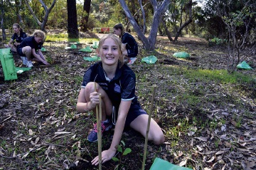 Mundaring Christian College Year 6 student Megan planting native seedlings at Sculpture Park.