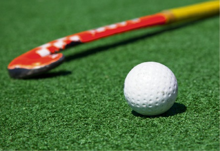 Confusion over Harold Rossiter Reserve hockey turf