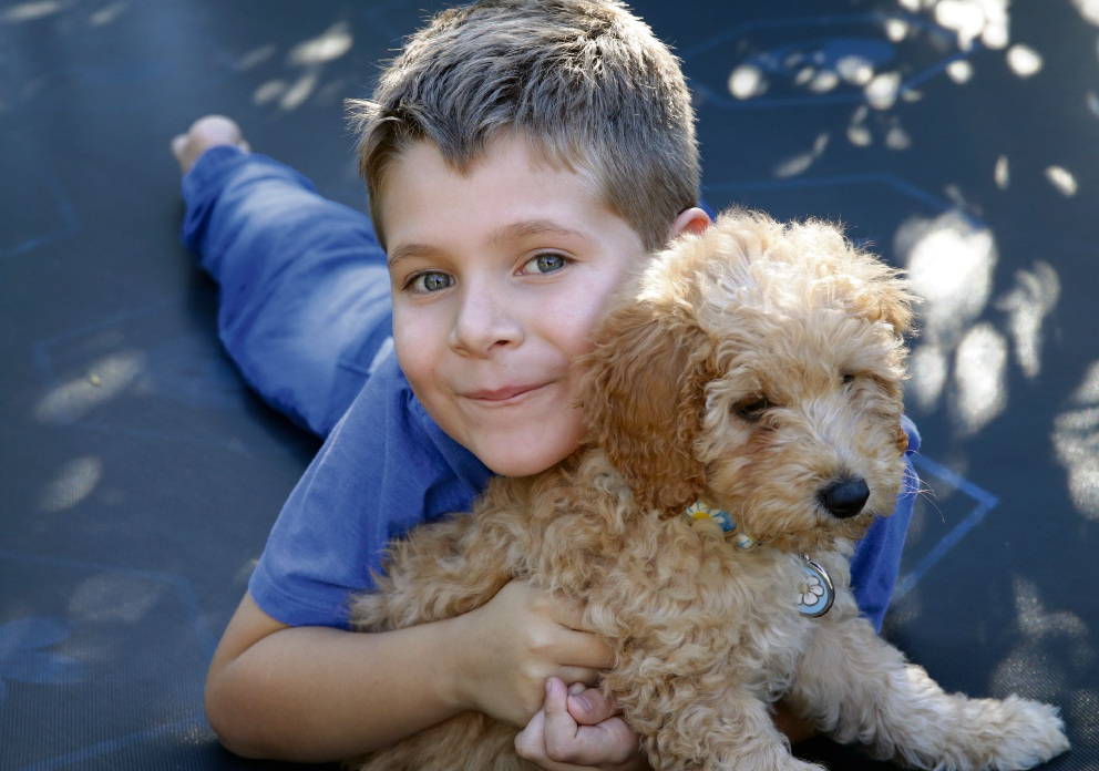 Rhys Franklin with his prospective diabetic alert puppy, Daisy. Picture: Martin Kennealey www.communitypix.com.au   d471357