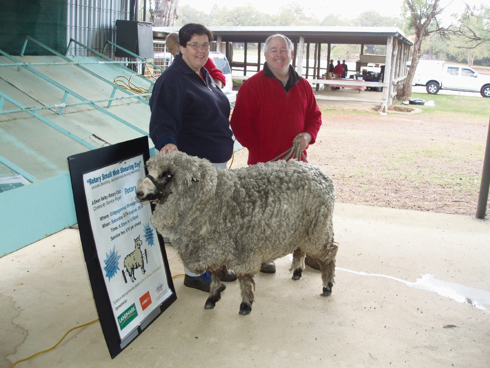 Ian and Erin Bresland had their pet sheep sheared at last year's event.