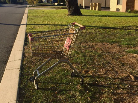 Trolley Track: annoyance over abandoned shopping trolleys