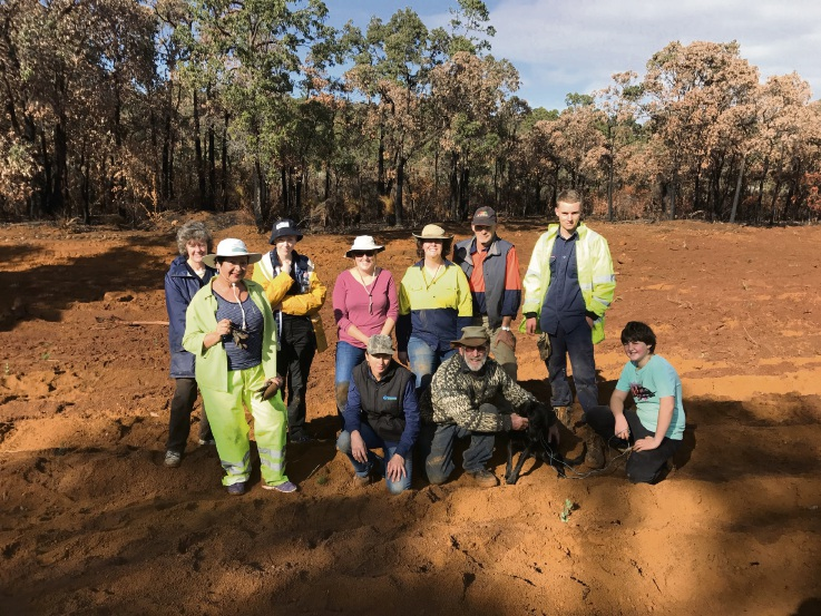 Volunteers got together to rehabilitate a section of Wallaby Way Reserve.