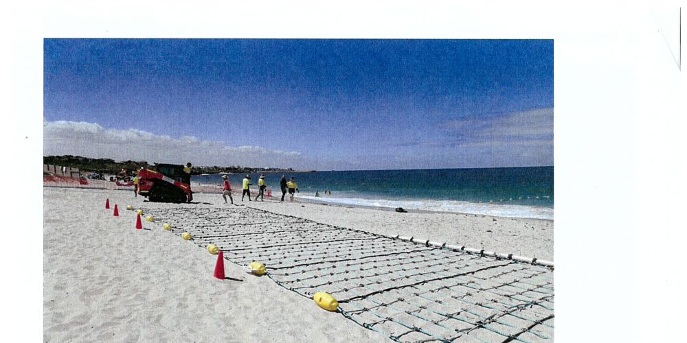There has still not been any decision on if a shark net will be installed at Falcon Bay.
