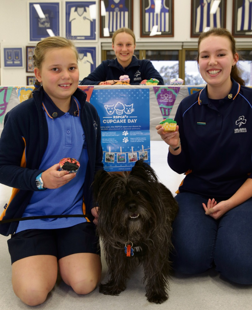 Padbury Adventurer Girl Guides Isabel Cunningham, Molly Bridge and Sarah Henbury  with Ruffy. Picture: Martin Kennealey www.communitypix.com.au   d472272