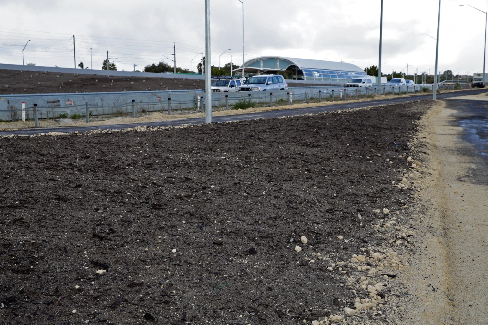 Compost lines the verges of the Mitchell Freeway extension. Picture: Martin Kennealey d471483