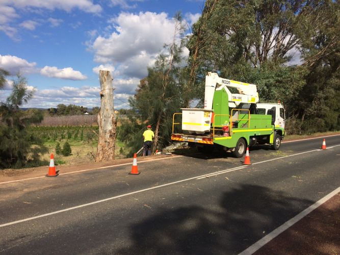 A City of Swan crew removes a tree to allow Water Corp personnel to access the burst water main. Picture: Bruce Hunt