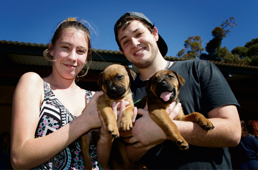 Beth Fitzgerald and Zane Lamb with their dogs Eve and Muscles. Picture: Marie Nirme