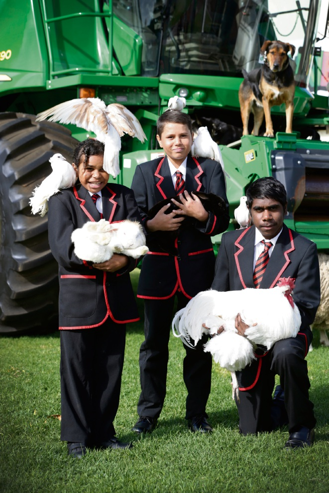 Lleyton Cumbula (12), Cassius Hatch (12) and Lloyd Wilridge (14) from Clontaff Aboriginal College with animals from the Perth Royal Show. Picture: Andrew Ritchie www.communitypix.com.au d474011
