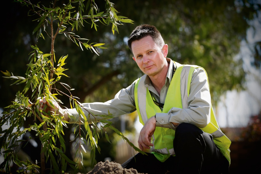 Mark Short (aborist) planting the 1000th tree which signifies the end of the City's winter street verge planting program for 2017. Picture: Andrew Ritchie www.communitypix.com.au d473884