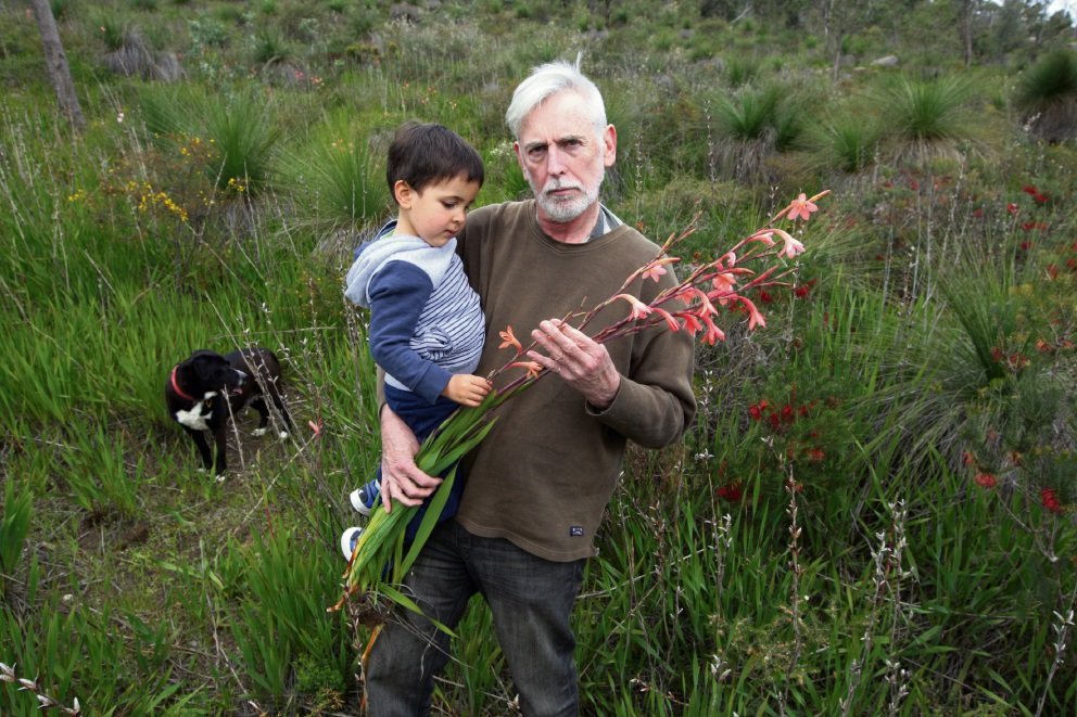 Colin Hughes on the weed warpath with grandson Manny Rodriguez in native bushland invaded by Watsonia. Picture: Bruce Hunt d474441