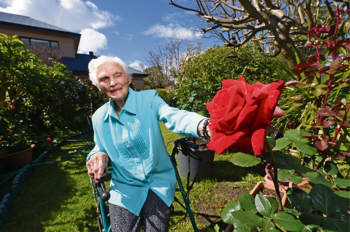 Alma Harris with her roses. Picture: Jon Hewson www.communitypix.com.au   d474307