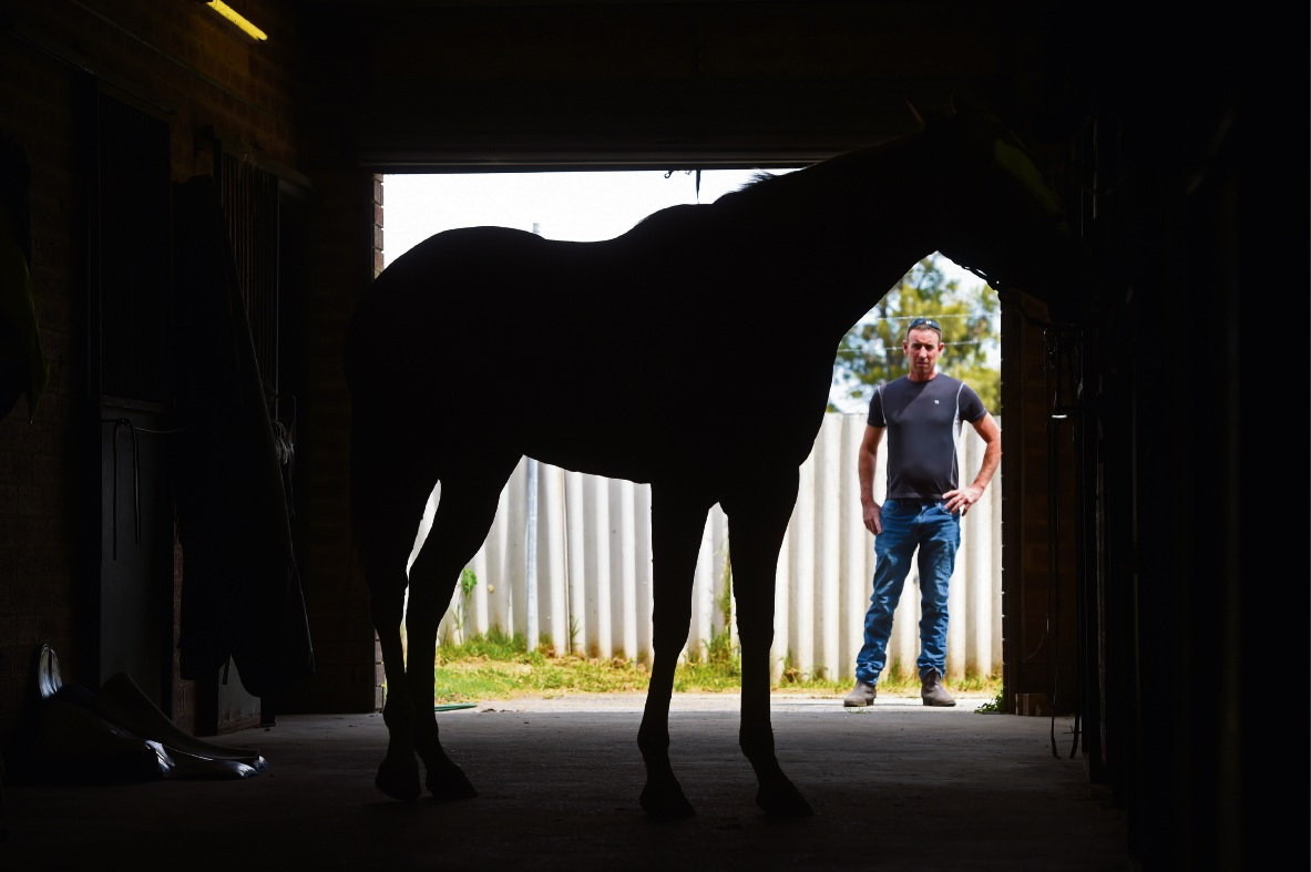 Ascot developments a disaster for traffic, says horse trainer