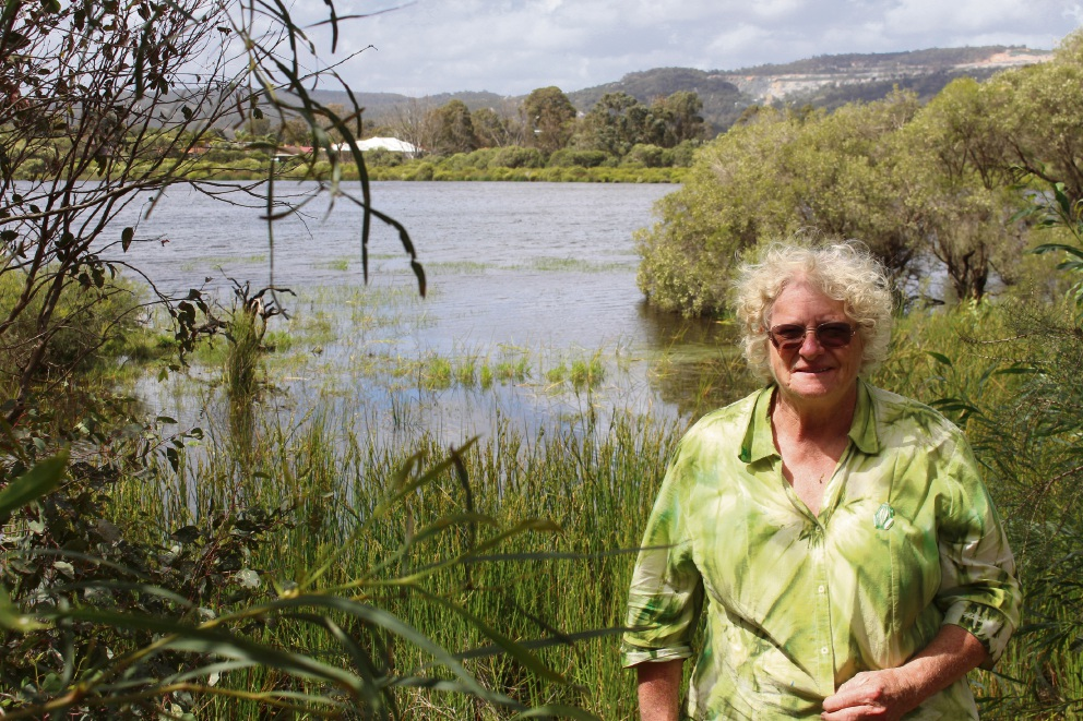 Friends of the Mary Carroll Wetland welcome grant which will aid wetland's health