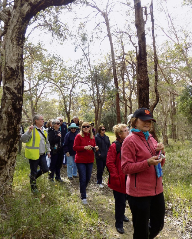 Walkers on the Wildflower and cultural walk tour at Bindjareb Park.