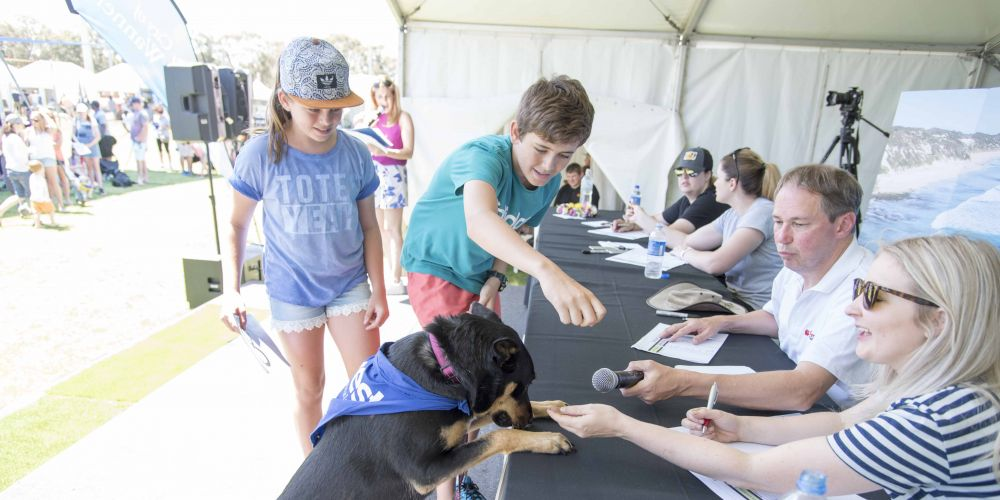 City of Wanneroo's annual Dog's Breakfast actually pretty good