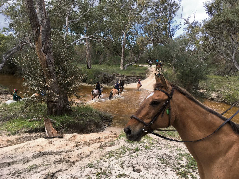 Wanneroo Horse and Pony Club did its Great Bush Ride through the Moore River region recently. Picture: Arlene Lockwood