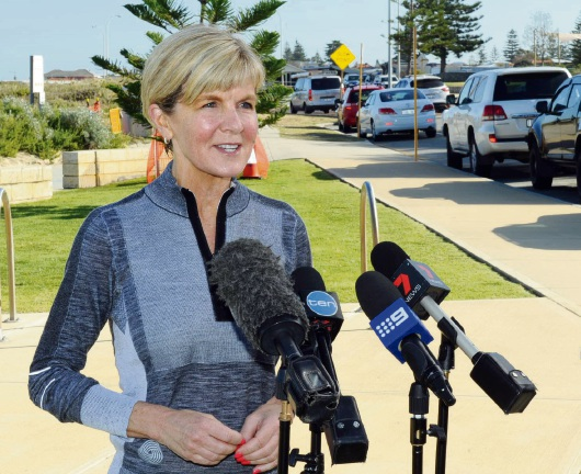 Acting PM Julie Bishop believes Yes vote will succeed in Curtin, willing to back Senator's Bill
